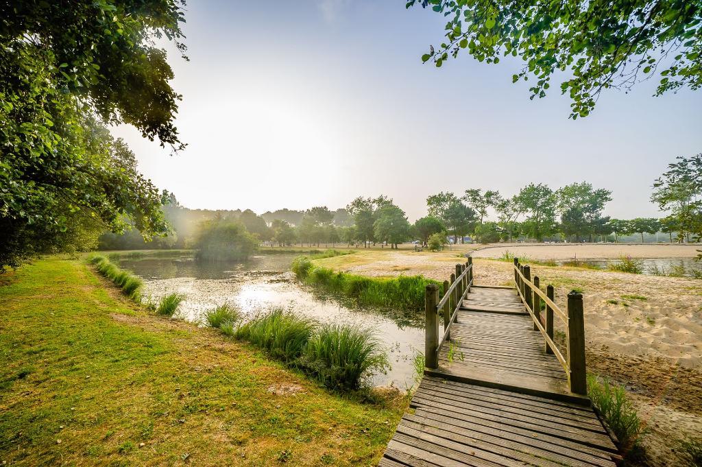 Proximité d'un étang de pêche